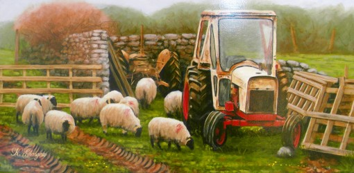 keith-glasgow Sheep and Tractor