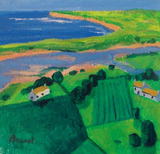 nico-brunet DOnegal Landscape