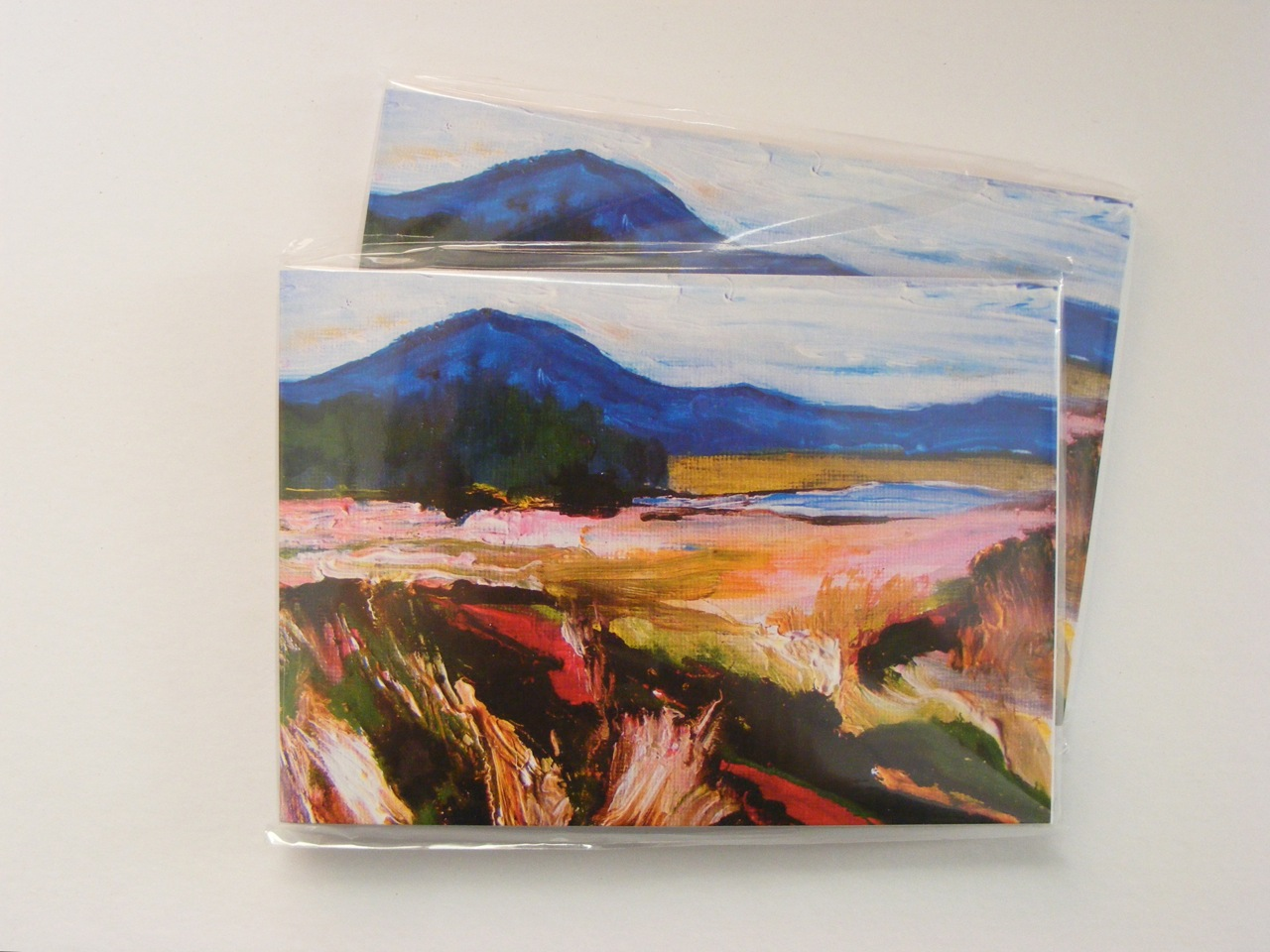 Oughterard Landscape Notebooks