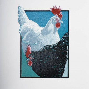 Hens by Sinead Wall