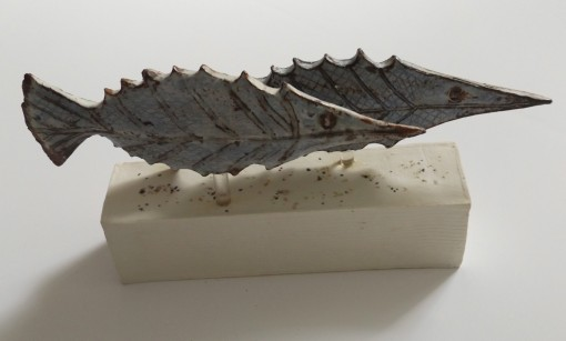 Shoal by Claire Finlay