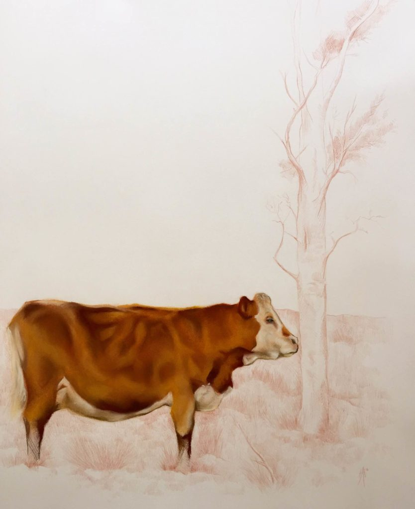 Brown Cow by Aaron Holton