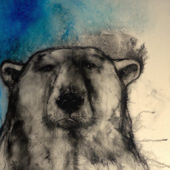 July Bear by Heidi Wickham