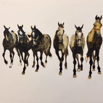 Six Dark Horses by Debi O'Hehir