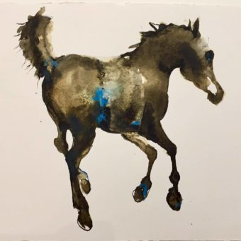 Young Horse by Debi O'Hehir
