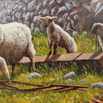 Lambs by Stone Wall by Keith Glasgow