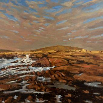 Goirtin by Mick O'Dea