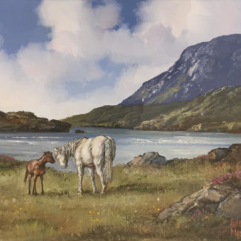 Ponies near Leenane by Eileen Meagher