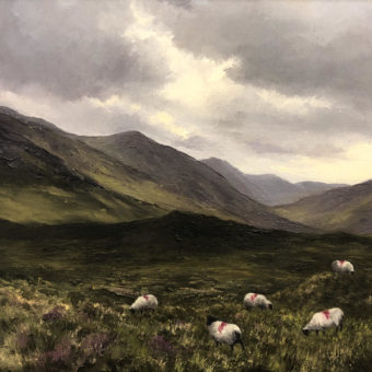 Damp Day, Inagh Valley by Eoin Lane