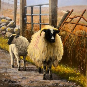 Ewe and Lamb by Gate by Keith Glasgow
