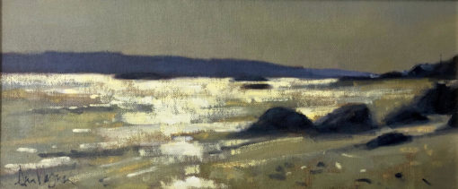 Connemara Shoreline by Ann Flynn