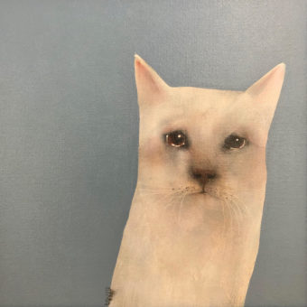 Sad Cat by Heidi Wickham