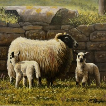 Ewe and Lambs by Wall by Keith Glasgow