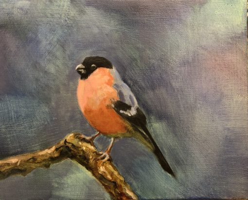Bullfinch by Beatrice O'Connell