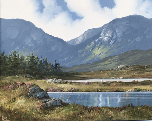 Roundstone Bog by Eileen Meagher