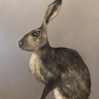 Hare on Grey by Heidi Wickham