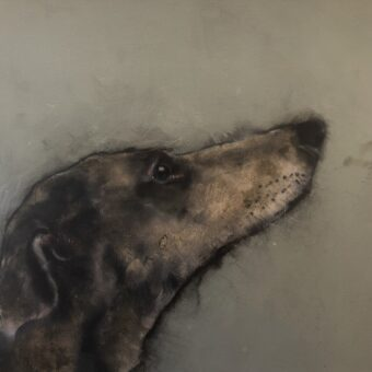 Hound I by Heidi Wickham