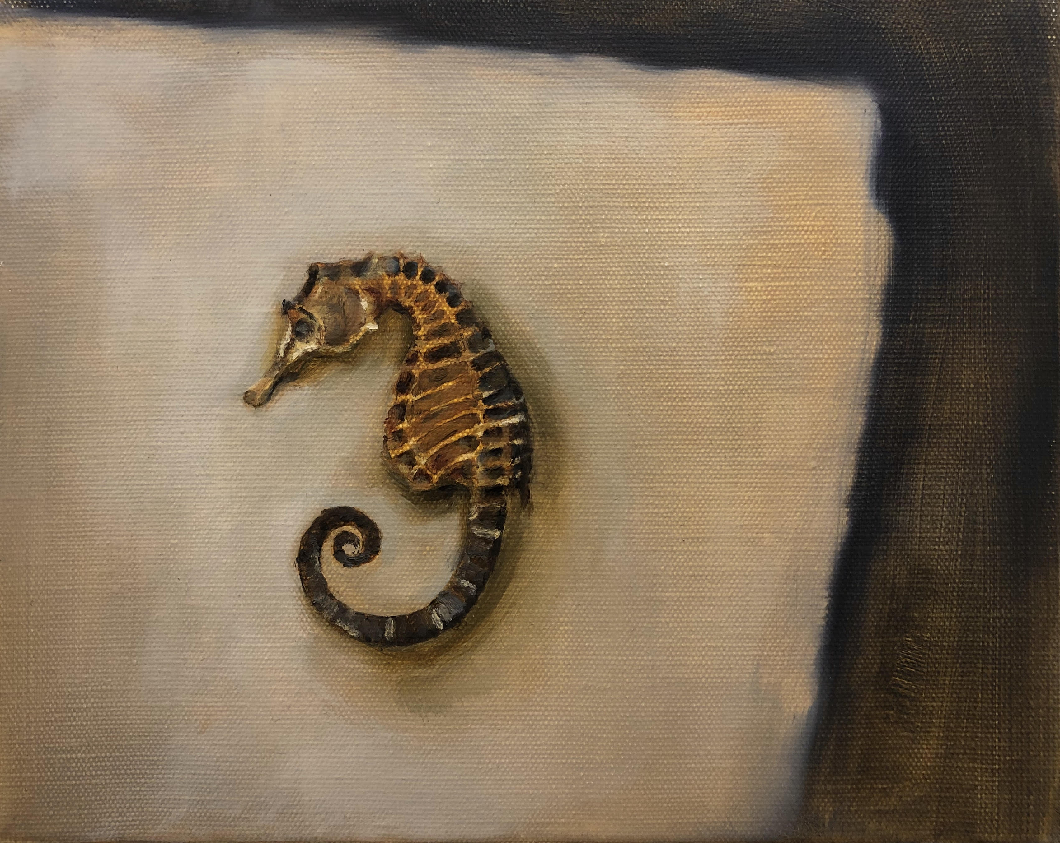 Seahorse by Beatrice O'Connell