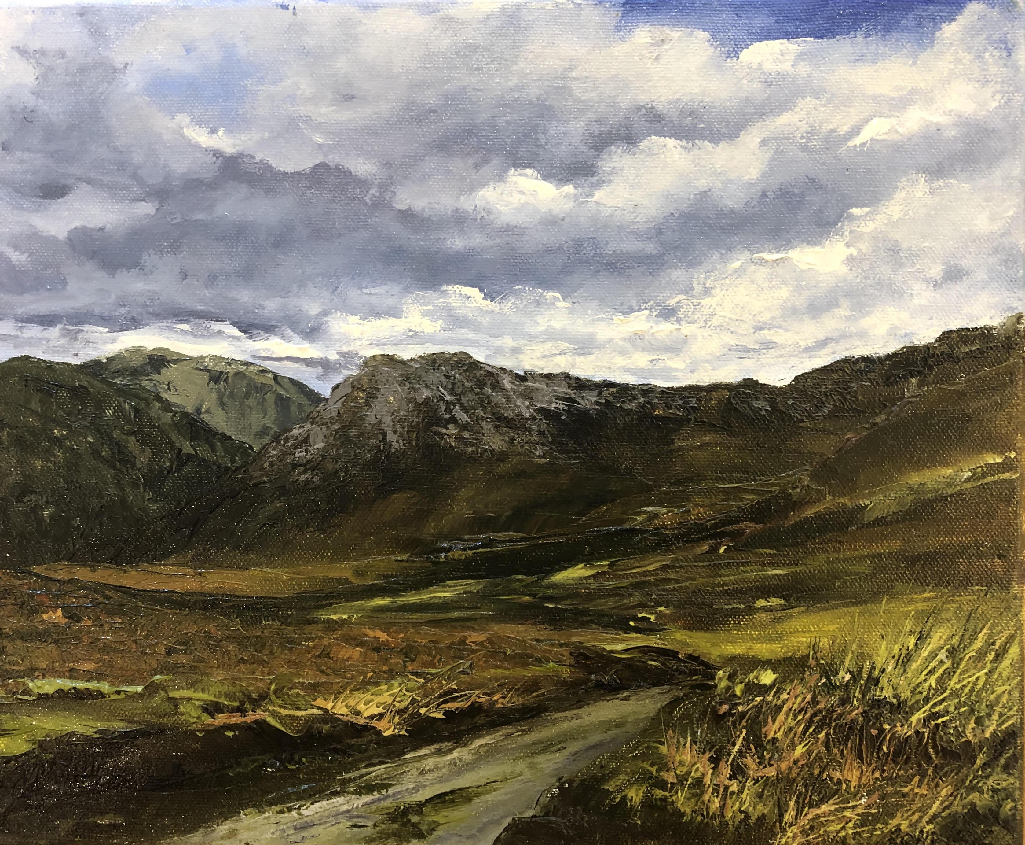 Baunoge Bog, High in the Mountains by Eoin Lane