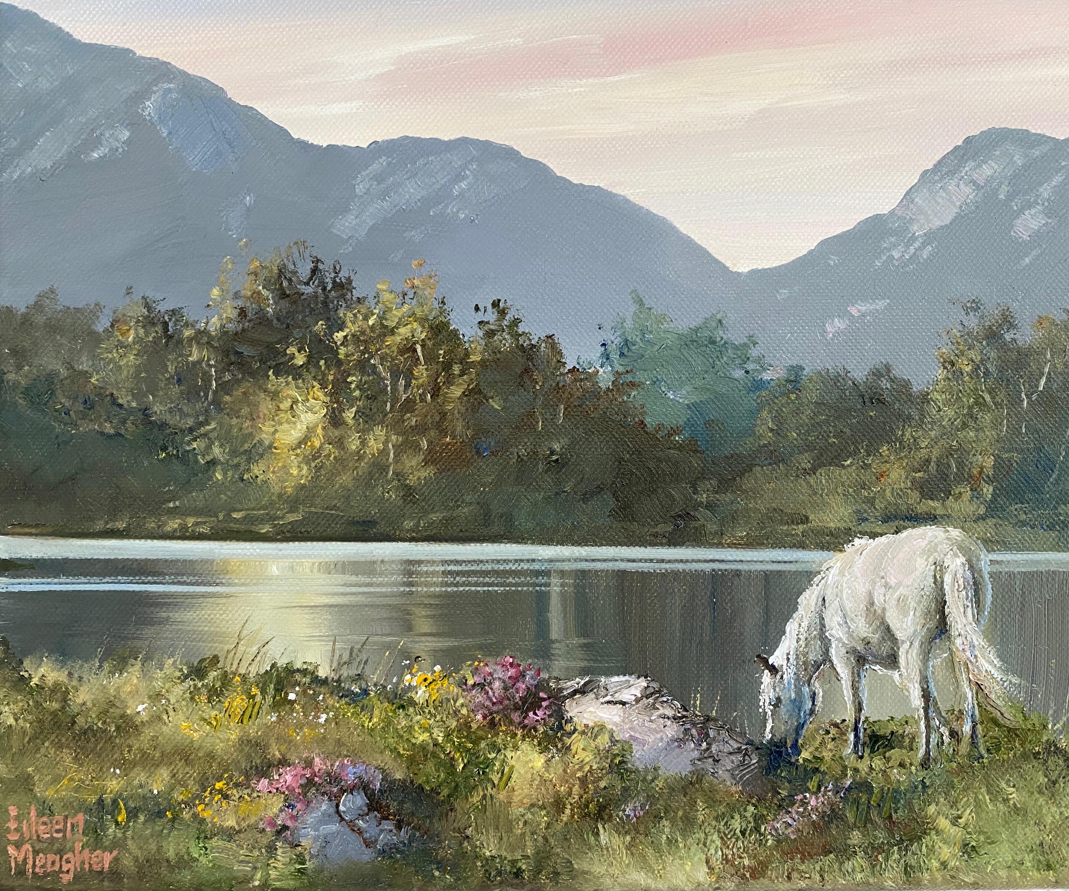 Errislannan by Eileen Meagher
