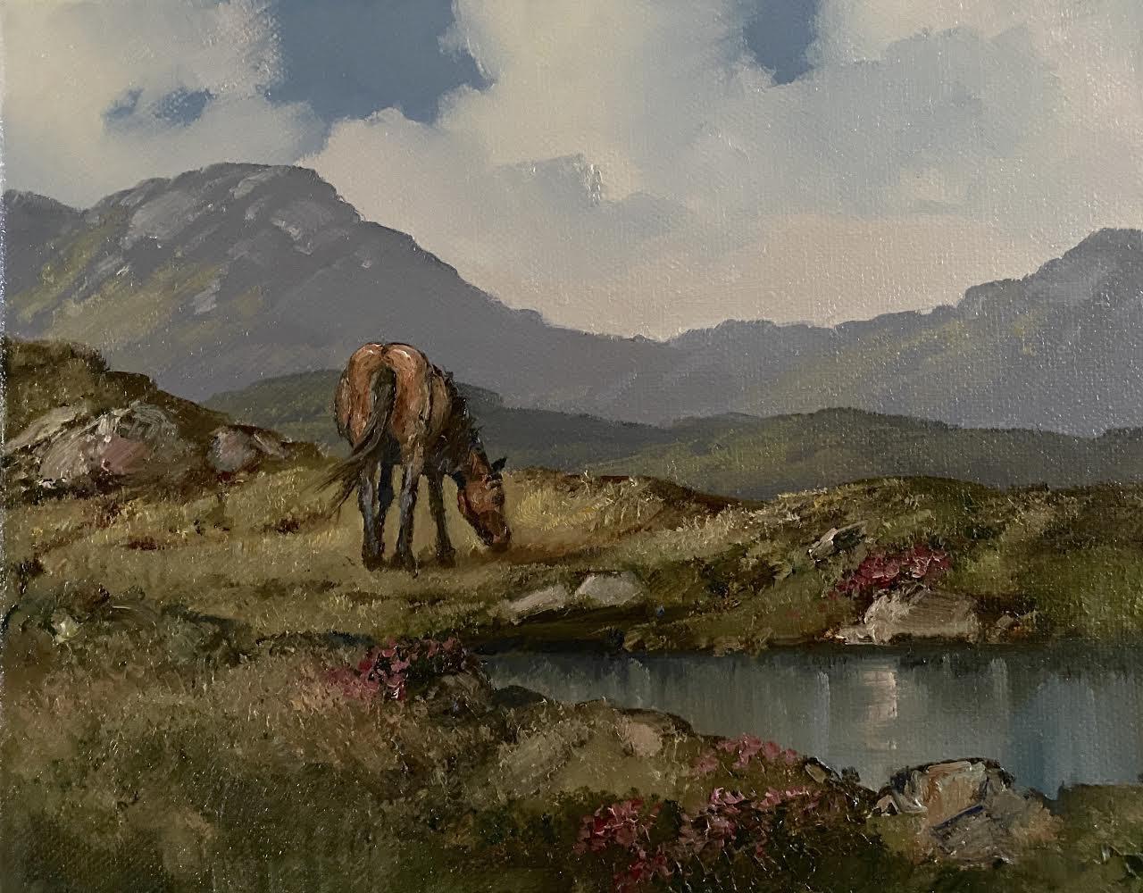 Errislannan, Connemara by Eileen Meagher