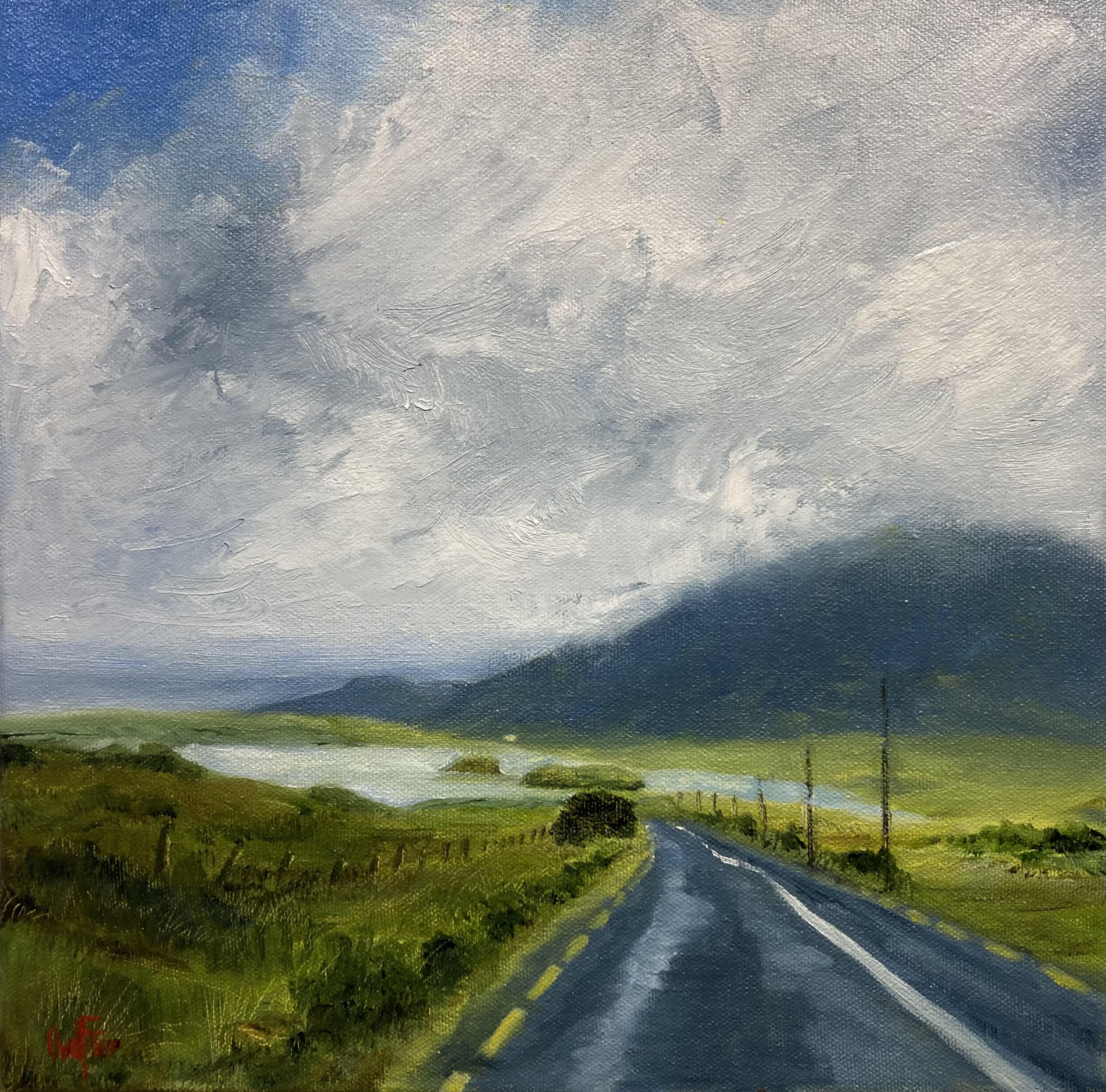 Approaching Lough Inagh by Olly van der Flier