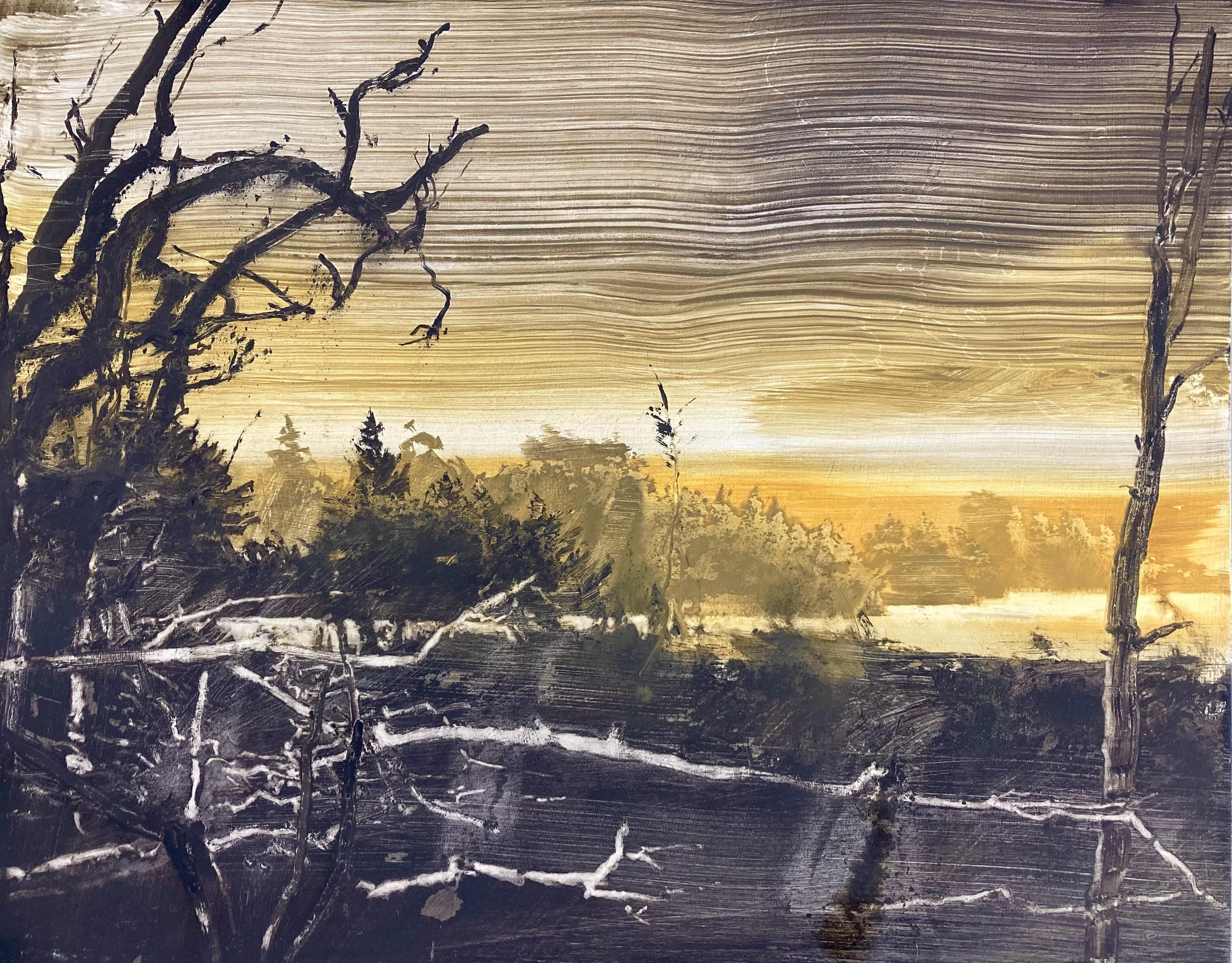 Lake edge - summer solstice by David Smith