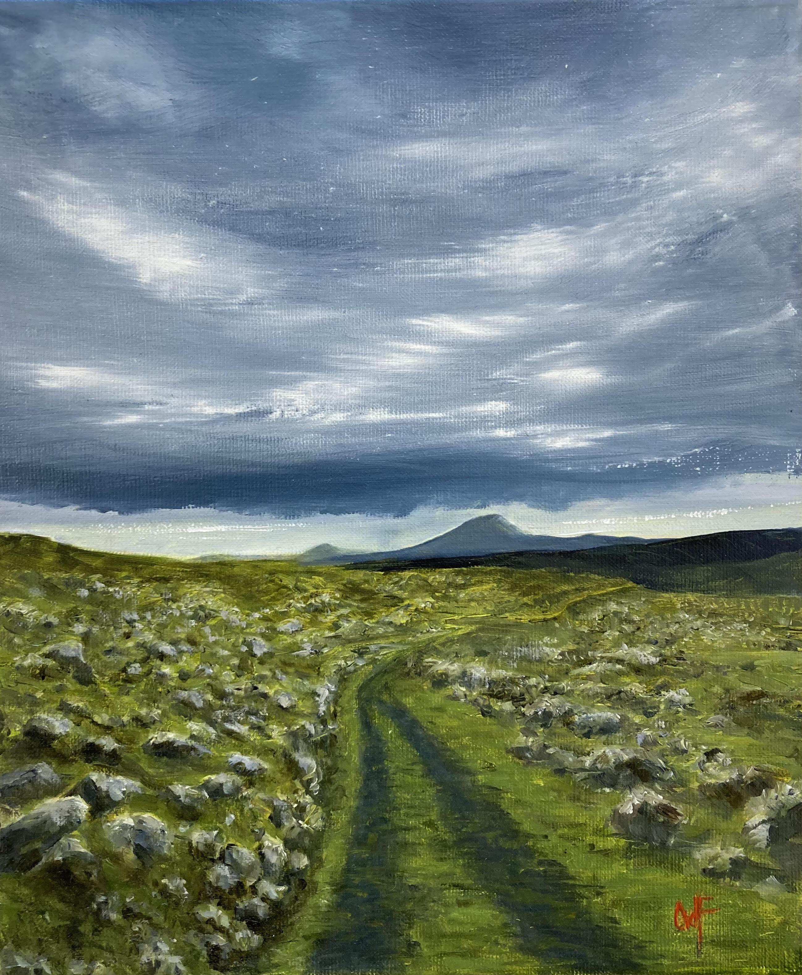 Old Road, Joyce Country by Olly van der Flier