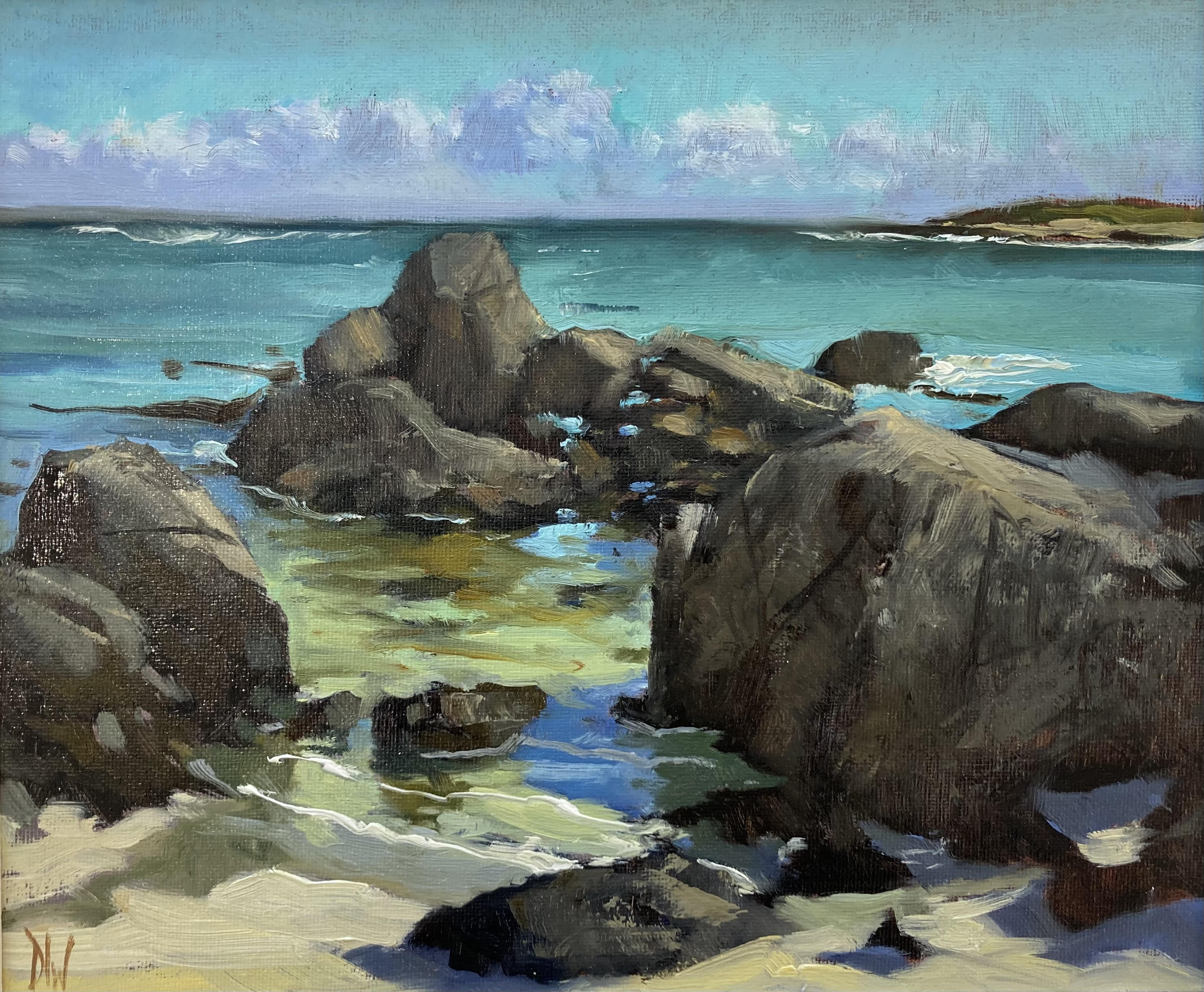 Rocks at Carna by Dave West