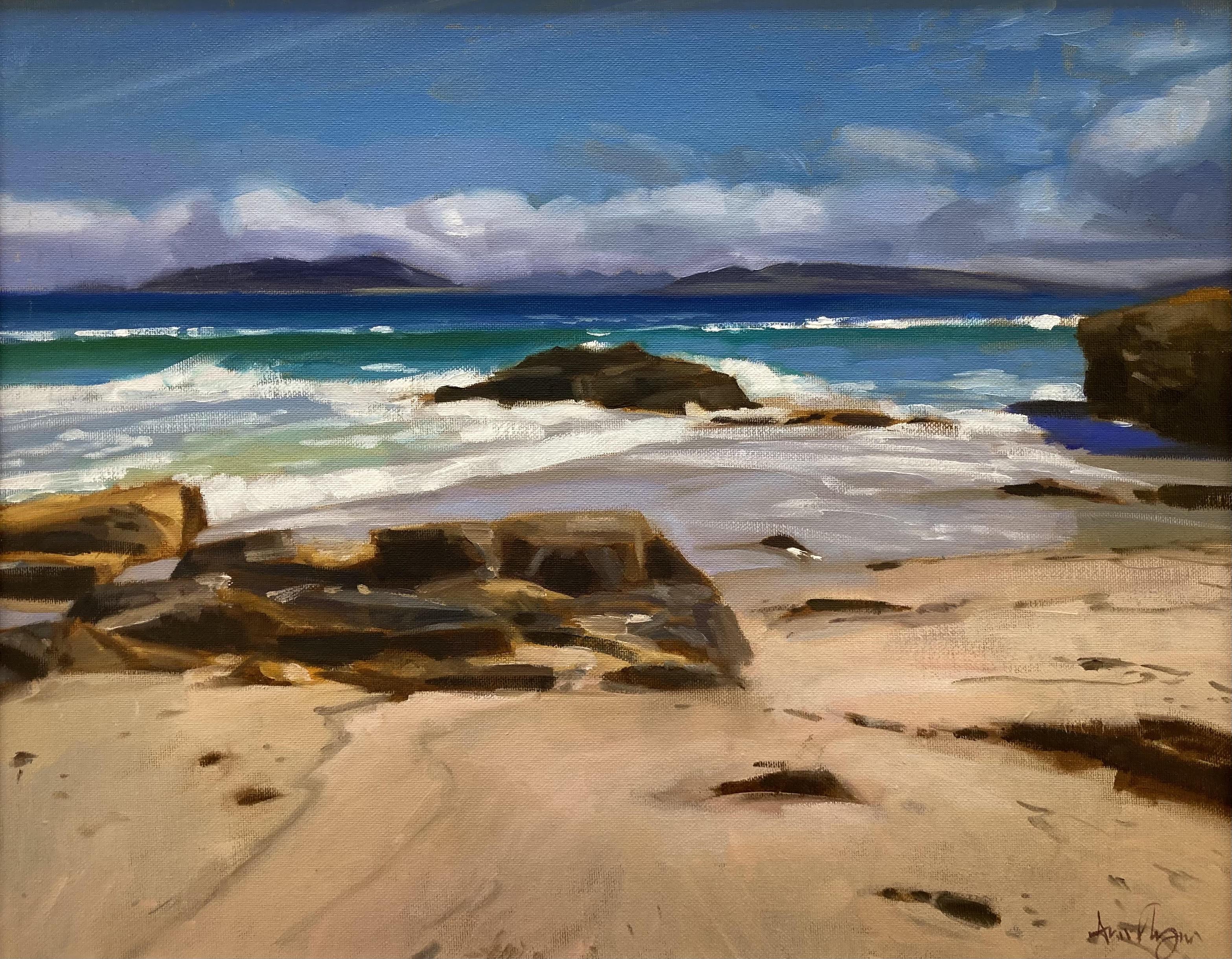 Connemara Shoreline by Ann Flynn