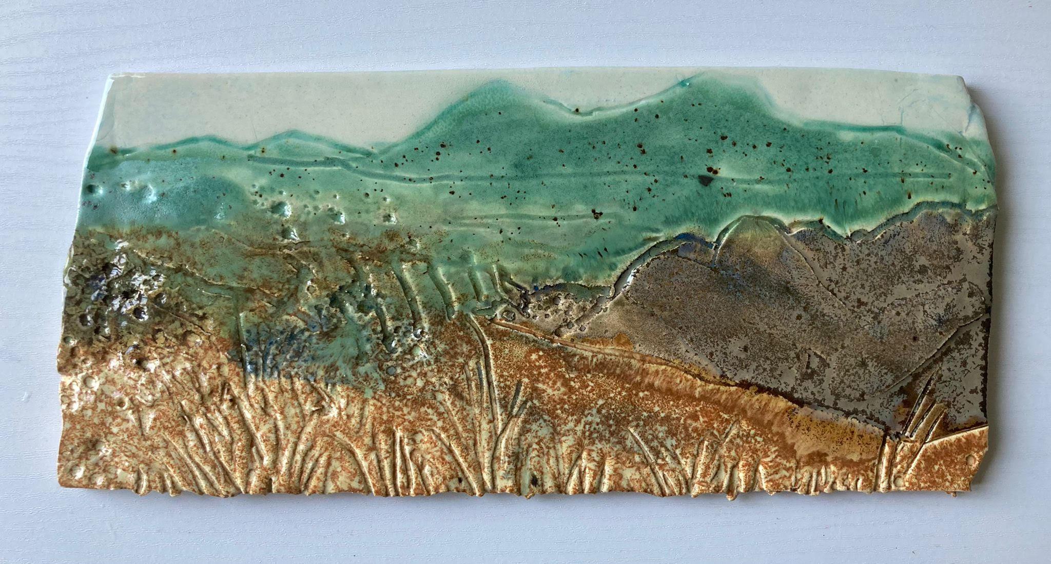 Bog, Rock, Grasses by Debbie Watkins
